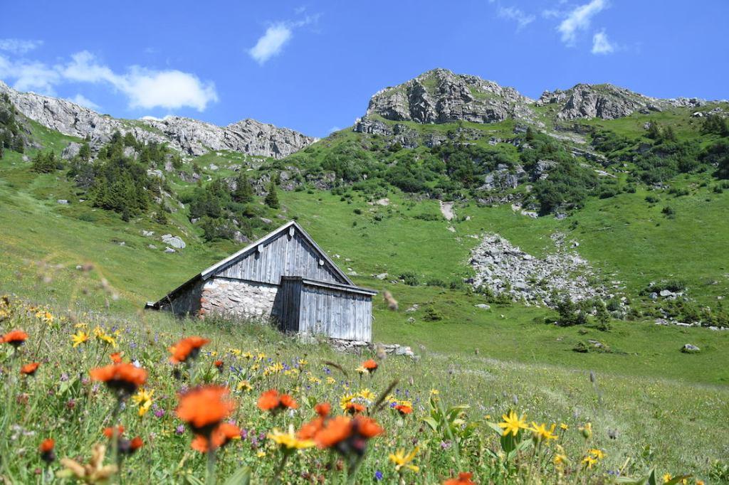 Glarus_Bi den Seelenen_Alp