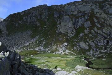 Wandern_Gotthard_5Seen_BachbettBlumenMoos