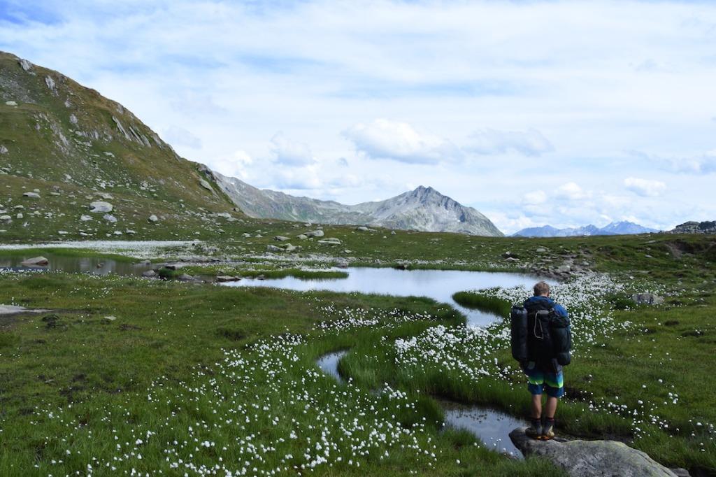 Wandern_Gotthard_5Seen_Blumen