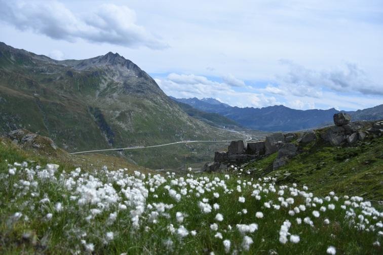Wandern_Gotthard_SichtaufGotthardpass